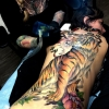 Melissa-Fusco-Tiger-Tattoo-Back-PIece-Denver-COlorado-Artist-in-progress-web