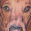 melis-fusco-dog-portrait-tattoo-web