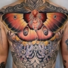 melis  melissa  fusco  denver colorado  evergreen award winning  tattoo  artist  torso  chest  tattoo  black  sage  studio