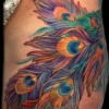 melissa-fusco-artist-peacock-feathers-tattoo-web