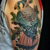 melissa fusco denver colorado tattoo artist best birds feather hawk falcon