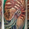melissa fusco denver colorado tattoo artist nautilus squid