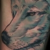 melissa-fusco-denver-colorado-tattoo-artist-wolf-antlers-tattoo-web.jpg