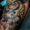 melissa-fusco-evergreen-colorado-tattoo-artist-laser-tattoo-removal-quanta-q-plus-owl-color-tattoo-web