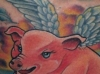 melissa-fusco-flying-pig-tattoo-web