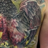 melissa-fusco-tattoo-artist-denver-colorado-large-scale-back-piece-vulture-tattoo-ibex-web