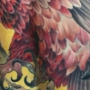 melissa-fusco-tattoo-artist-denver-colorado-vulture-backpiece-large-scale-tattoo-work-web