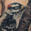melissa fusco tattoo artist woodpecker bird tattoo black denver colorado