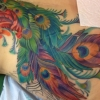 melissa-fusco-tattoo-in-progress-peacock-web