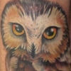 melissa-fusco-whet-owl-tattoo-web